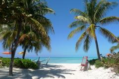 Florida / Karibik